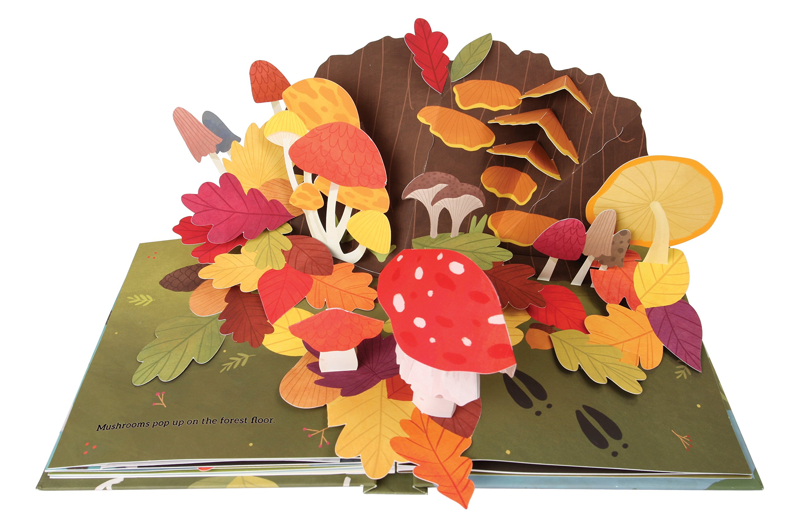 leaves tresors caches foret papier paper 3D card popup